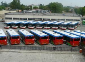 Nowe autobusy Solbus na zajezdni
